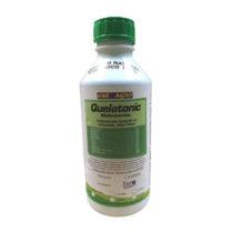 Quelatonic-1